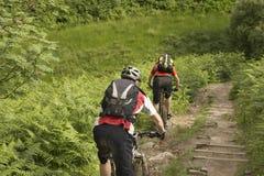 Οι ποδηλάτες στη χώρα ακολουθούν Στοκ φωτογραφία με δικαίωμα ελεύθερης χρήσης