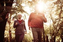 Οι πρεσβύτεροι συνδέουν μαζί στο πάρκο στοκ φωτογραφία με δικαίωμα ελεύθερης χρήσης