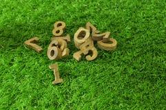 Οι πρώτοι, ξύλινοι αριθμοί στην πράσινη χλόη Στοκ Φωτογραφίες