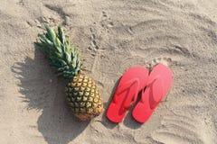 Οι πτώσεις ανανά και κτυπήματος θερινών φωτογραφιών βρίσκονται στην παραλία άμμου Στοκ φωτογραφία με δικαίωμα ελεύθερης χρήσης