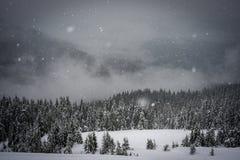 Οι πτώσεις χιονιού στα βουνά Στοκ Φωτογραφία