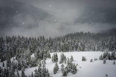 Οι πτώσεις χιονιού στα βουνά Στοκ φωτογραφία με δικαίωμα ελεύθερης χρήσης