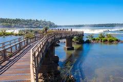 Οι πτώσεις Iguazu Στοκ εικόνες με δικαίωμα ελεύθερης χρήσης