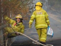 Οι πυροσβέστες σε έναν φράκτη κατά τη διάρκεια ενός θάμνου βάζουν φωτιά σε μια προαστιακή περιοχή της πόλης Knox Στοκ Φωτογραφία
