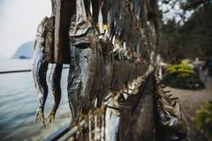 Οι σαρδέλλες κρεμούν στο στεγνωτήρα, στην ακτή της λίμνης Iseo στοκ φωτογραφία με δικαίωμα ελεύθερης χρήσης