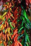 Οι σειρές των πιπεριών τσίλι ποικιλίας κρεμούν μαζί μέσα Στοκ φωτογραφίες με δικαίωμα ελεύθερης χρήσης