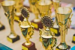 Οι σειρές των τροπαίων και των βραβείων πρίν απονέμει τους νικητές 1265 Στοκ Εικόνα