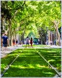 Οι σιδηρόδρομοι στη Βαρκελώνη Στοκ εικόνα με δικαίωμα ελεύθερης χρήσης