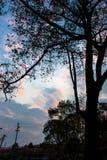 Οι σκιές του ηλιοβασιλέματος Στοκ εικόνες με δικαίωμα ελεύθερης χρήσης