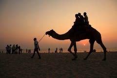 Οι σκιαγραφίες των ανθρώπων παίρνουν τους γύρους καμηλών στην παραλία Bekal στοκ φωτογραφία με δικαίωμα ελεύθερης χρήσης