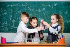 Οι σπουδαστές κάνουν τα πειράματα της βιολογίας με το μικροσκόπιο Μικροσκόπιο χημείας Μικροσκόπιο εργαστηρίων r Παιδάκια στοκ εικόνες