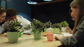 Οι σπουδαστές που κάθονται σε έναν καφέ σε έναν πίνακα με τα λουλούδια στα δοχεία διαβάζουν ένα βιβλίο και μια ομιλία Ελεύθερος χ απόθεμα βίντεο