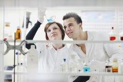 Οι σπουδαστές συνδέουν στο εργαστήριο στοκ εικόνες με δικαίωμα ελεύθερης χρήσης
