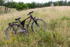 Οι στάσεις ποδηλάτων σε ένα λιβάδι ανθίζουν σε ένα κλίμα των πράσινων δέντρων και ενός δάσους Στοκ Εικόνες