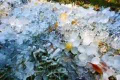 Οι στήλες και η χλόη πάγου Στοκ εικόνες με δικαίωμα ελεύθερης χρήσης