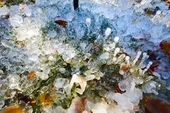 Οι στήλες και τα φύλλα πάγου Στοκ Φωτογραφία