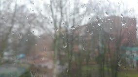 Οι σταγόνες βροχής στο γυαλί απόθεμα βίντεο