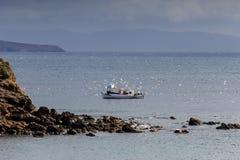 Οι συλλήψεις fishermans αλιεύουν στη θάλασσα στοκ εικόνες