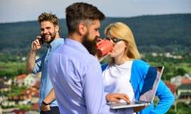 Οι συνάδελφοι με το lap-top απασχολούνται στην υπαίθρια ηλιόλουστη ημέρα, υπόβαθρο φύσης Συνάδελφοι που εξετάζουν το lap-top οθόν Στοκ εικόνες με δικαίωμα ελεύθερης χρήσης