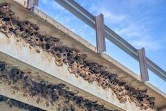 Οι συστάδες του απότομου βράχου καταπίνουν τις φωλιές λάσπης Στοκ εικόνες με δικαίωμα ελεύθερης χρήσης