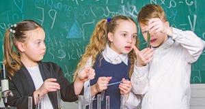 Οι σχολικοί μαθητές ομάδας μελετούν τα χημικά υγρά Σωλήνες δοκιμής με τις ζωηρόχρωμες ουσίες E στοκ φωτογραφία με δικαίωμα ελεύθερης χρήσης