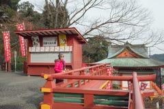 Οι ταξιδιώτες ελεύθερου χρόνου μετά από να περπατήσουν επάνω τα σκαλοπάτια στην επιφυλακή δείχνουν στο toku Inari των λαρνάκων YÅ στοκ φωτογραφίες με δικαίωμα ελεύθερης χρήσης