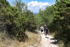 Οι ταξιδιώτες που περπατούν στο δέντρο σύρουν στο εθνικό πάρκο της Κροατίας το καλοκαίρι στοκ εικόνα με δικαίωμα ελεύθερης χρήσης