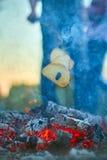 Οι τελευταίοι σπινθήρες του βραδιού βάζουν φωτιά Στοκ Εικόνες