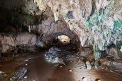 Οι τοίχοι σπηλιών, που σκάουν μέσα και έξω από το σκοτάδι, με τους μικρούς σχηματισμούς σπηλιών και τα χρώματα, από πράσινο στην  Στοκ Φωτογραφίες