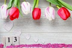Οι τουλίπες για την ημέρα μητέρων ` s, 13 μπορούν Στοκ Εικόνες