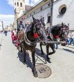 Οι τουρίστες απολαμβάνουν έναν γύρο μεταφορών στο τετράγωνο αγοράς στην Κρακοβία Στοκ εικόνες με δικαίωμα ελεύθερης χρήσης
