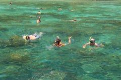 Οι τουρίστες απολαμβάνουν με την κολύμβηση με αναπνευστήρα σε μια τροπική θάλασσα Phi Phi στο isla Στοκ φωτογραφίες με δικαίωμα ελεύθερης χρήσης