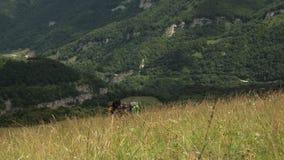 Οι τουρίστες με τα σακίδια πλάτης αναρριχούνται στο βουνό βουνά πεζοπορίας απόθεμα βίντεο