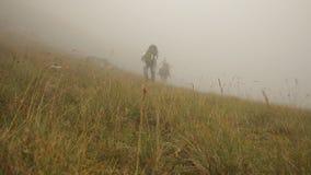 Οι τουρίστες με τα σακίδια πλάτης αναρριχούνται στο βουνό στην ομίχλη, steadicam πυροβολισμός απόθεμα βίντεο