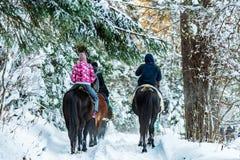 Οι τουρίστες οδηγούν τα άλογα κατά τη χειμερινή δασική πίσω άποψη Στοκ φωτογραφία με δικαίωμα ελεύθερης χρήσης