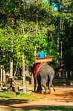 Οι τουρίστες οδηγούν έναν ελέφαντα στην καρέκλα Καμπότζη χάουντα Στοκ Εικόνες