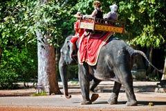 Οι τουρίστες οδηγούν έναν ελέφαντα Στοκ φωτογραφία με δικαίωμα ελεύθερης χρήσης