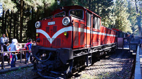 Οι τουρίστες παίρνουν έναν γύρο στο τραίνο βουνών Alishan Στοκ Φωτογραφίες