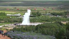 Οι τουρίστες παρατηρούν geyser την έκρηξη στο πράσινο τοπίο τομέων λιβαδιών φιορδ στο χρυσό κύκλο Ισλανδία τη νεφελώδη ημέρα 4k απόθεμα βίντεο