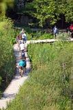 Οι τουρίστες περπατούν σε μια πορεία στις λίμνες Plitvice Στοκ φωτογραφία με δικαίωμα ελεύθερης χρήσης