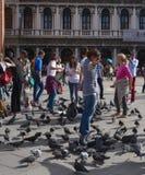 Οι τουρίστες περπατούν στην πλατεία SAN Marco Βενετία στοκ εικόνες με δικαίωμα ελεύθερης χρήσης