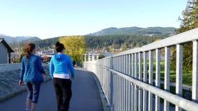 Οι τουρίστες περπατούν στη γέφυρα στο δύσκολο πάρκο σημείου απόθεμα βίντεο