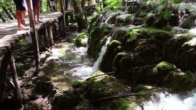 οι τουρίστες που περπατούν στην πορεία μέσω των εθνικών λιμνών Plitvice πάρκων απόθεμα βίντεο