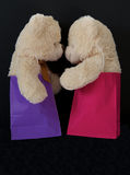 οι τσάντες αντέχουν το δώρ& Στοκ Εικόνα