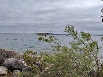 Οι υγροί βράχοι λιμνών νερού εγκαταστάσεων γεφυρών καθαρίζουν την αποβάθρα Στοκ Εικόνα