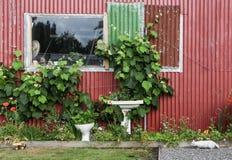 Οι υδραυλικοί καλλιεργούν Στοκ εικόνες με δικαίωμα ελεύθερης χρήσης