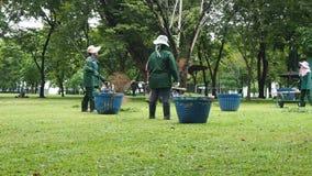 Οι υπάλληλοι κρατούν ένα πάρκο της Μπανγκόκ καλά διατηρημένο απόθεμα βίντεο