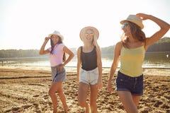 Οι φίλες σε ένα κόμμα γελούν στην παραλία στο πάρκο στοκ εικόνα με δικαίωμα ελεύθερης χρήσης