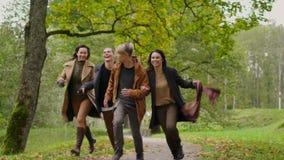 Οι φίλοι που περπατούν το φθινόπωρο σταθμεύουν απόθεμα βίντεο