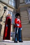 Οι φρουρές της τιμής στο κόκκινο galla ομοιόμορφο φρουρώντας το βασιλικό παλάτι Amalienborg κατοικιών από την προοπτική βατράχων Στοκ φωτογραφία με δικαίωμα ελεύθερης χρήσης